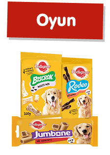 Pedigree® Oyun